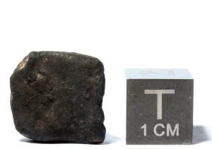 3.5 g specimen / photo: André Moutinho (meteorito.com.br)