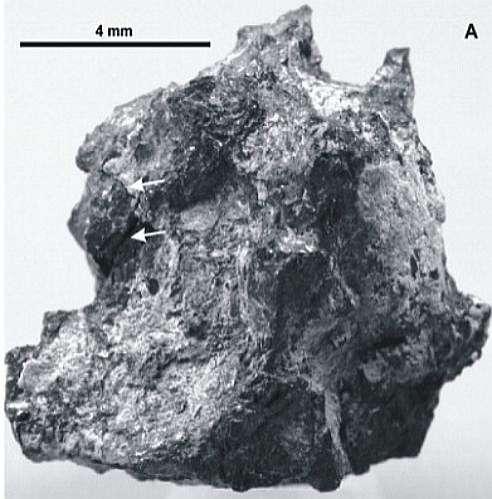 Piece of 'Hypatia'(30 g) / Image: b14643.de / Kramers et al. (2013)