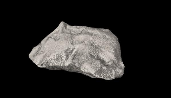 3D scan / image credit: CSIRO