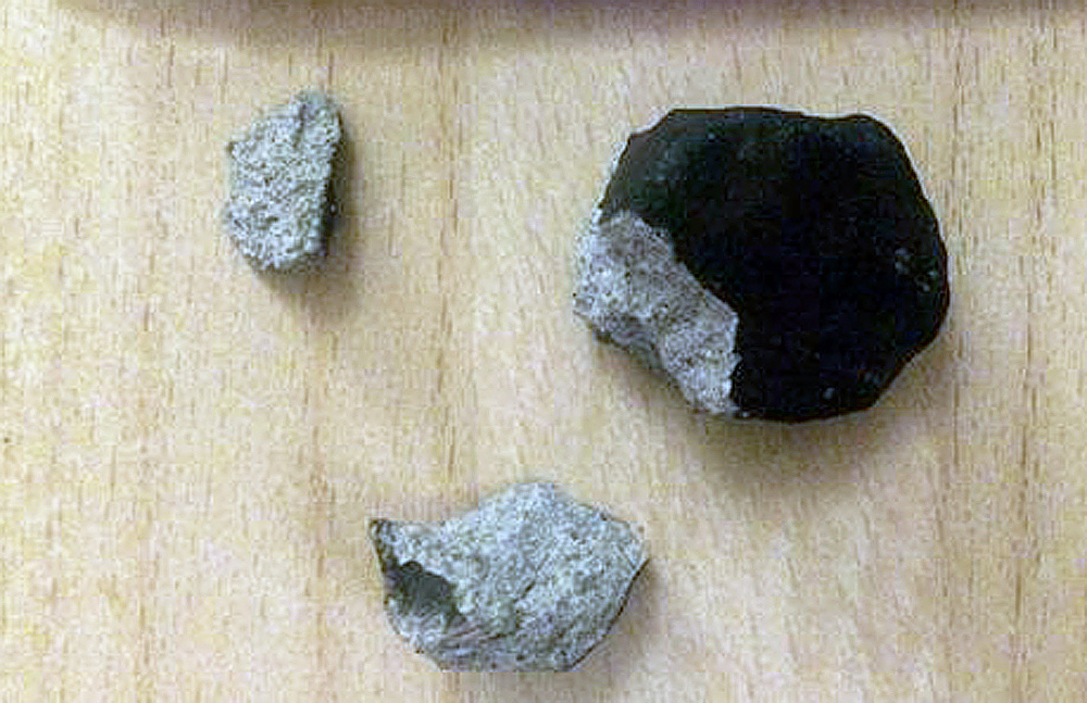 First meteorite (56g) found of Danish fall on 6 February 2016 photo: Astrid Søndberg, TV 2
