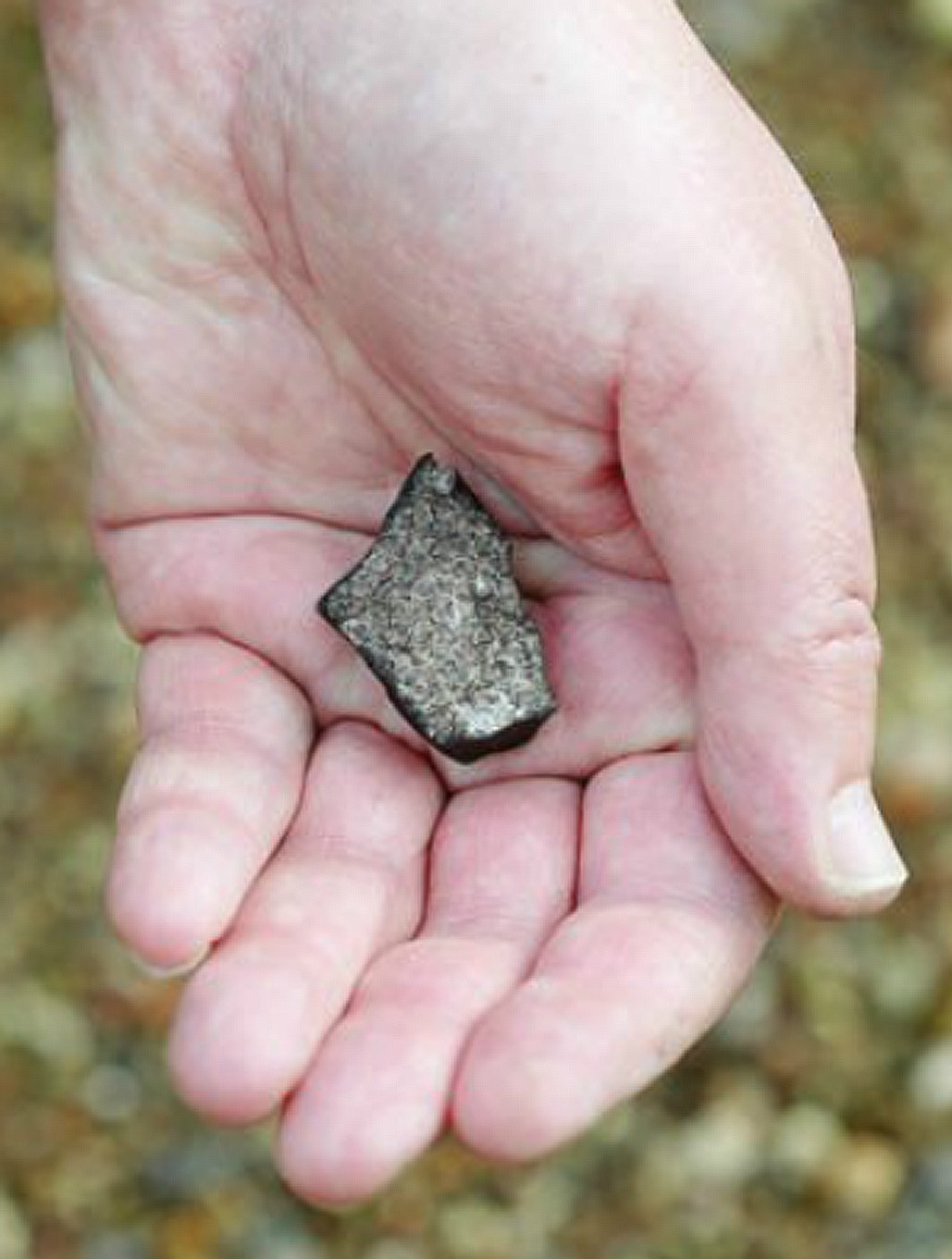 Martin Dyrbye's meteorite (18 g) found in Egholmvej in Vanløse/ photo: Martin Sørensen / Vanløse Bladet