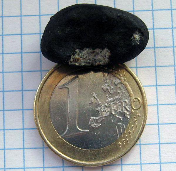 The intact Ardón meteorite