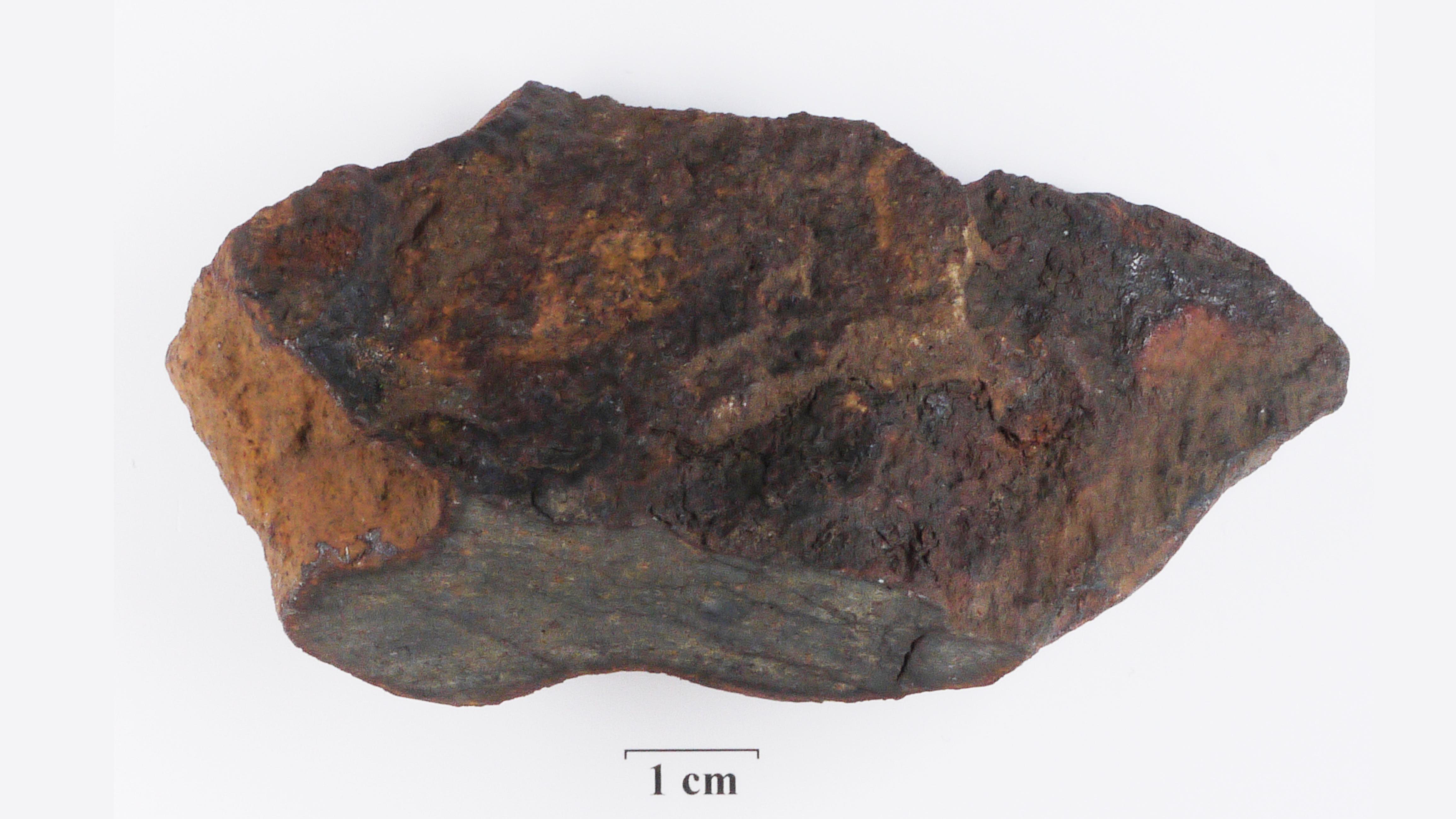 Meteorit Gestern über Deutschland
